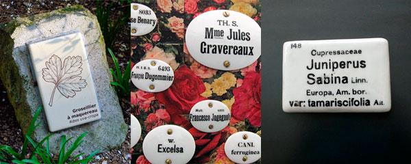 LE CHARME SURANNE DES ETIQUETTES EN PORCELAINE Réalisées autrefois par de grandes fabriques de porcelaine, comme celles de Limoges, les étiquettes étaient imprimées à l'encre de Chine et fixées sur des piquets métalliques noirs. Elles marquent encore aujourd'hui le grand intérêt scientifique porté au végétal à l'époque. A gauche, Roseraie de l'Haÿ-les-Roses, à droite probablement étiquette du jardin botanique de Gand