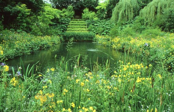 En Normandie, un jardin du au savoir-faire de Louis Benech, met en scène de manière élégante la flore locale.