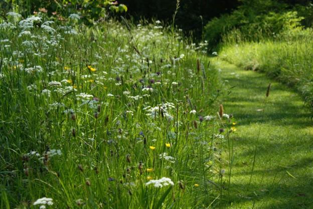 Le jardin maillon pr cieux de la biodiversit crits for Jardin eden prairie