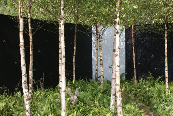 Cette thématique en blanc et noir est renouvelée par le jardinier et ethnobotaniste Fiann Ó Nualláin qui y apporte la vision métaphysique du bois sacré des druides. Sa palette fait appel à des plantes indigènes : Ajuga reptans, Allium ursinum, Athyrium filix femina, Betula pendula, Deschampsia cespitosa, Dryopteris filix-mas, Gallium odoratum.