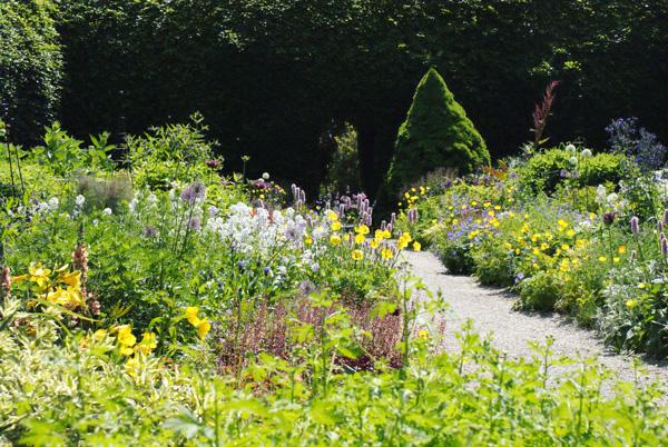 "Le ""wild garden"" de William Robinson recréé à Mount Usher Gardens."